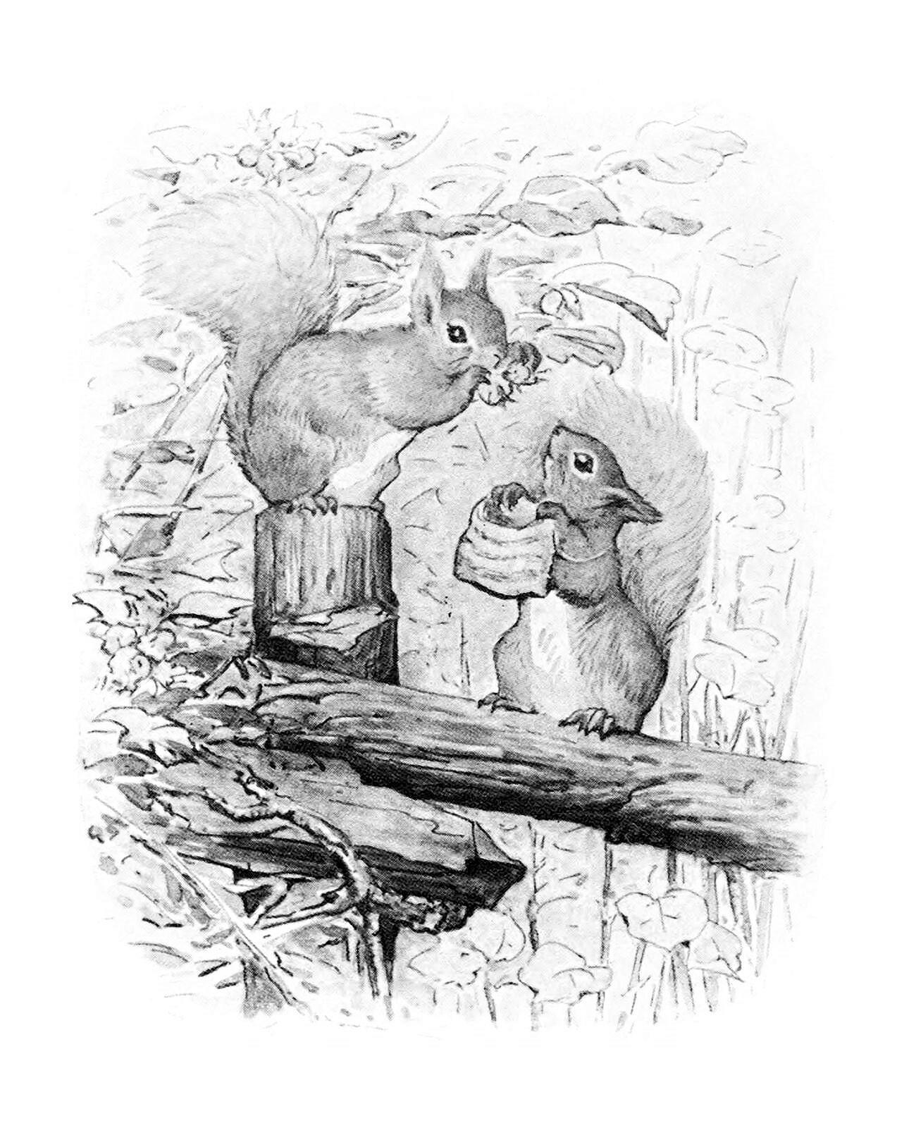 01e squirrel nutkin frontispiece 1600